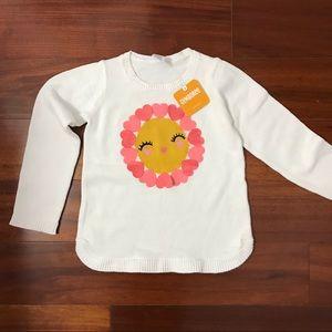 Gymboree Cute Pullover Sweater